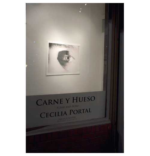 Photo from the portfolio Carne y Hueso by Cecilia Portal